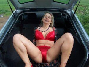 Volis seks u kolima